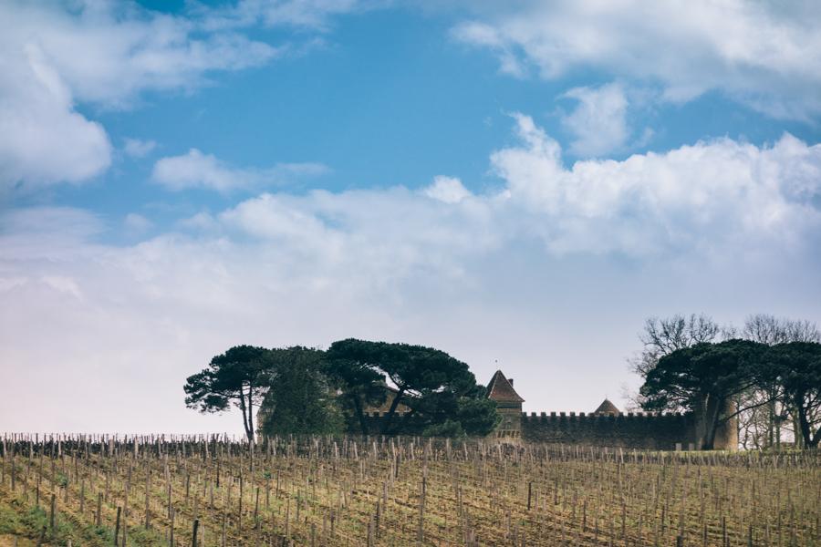 Bordeaux-15