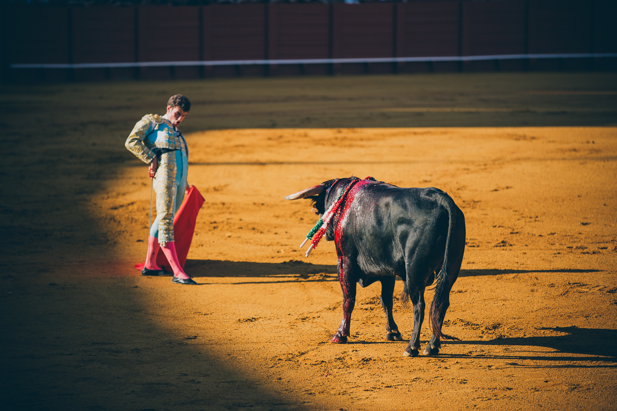 Seville Bull Fighting-10