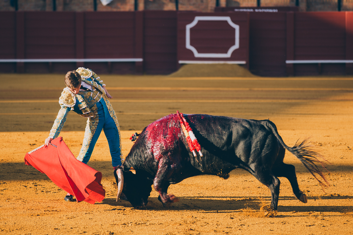 Seville Bull Fighting-12