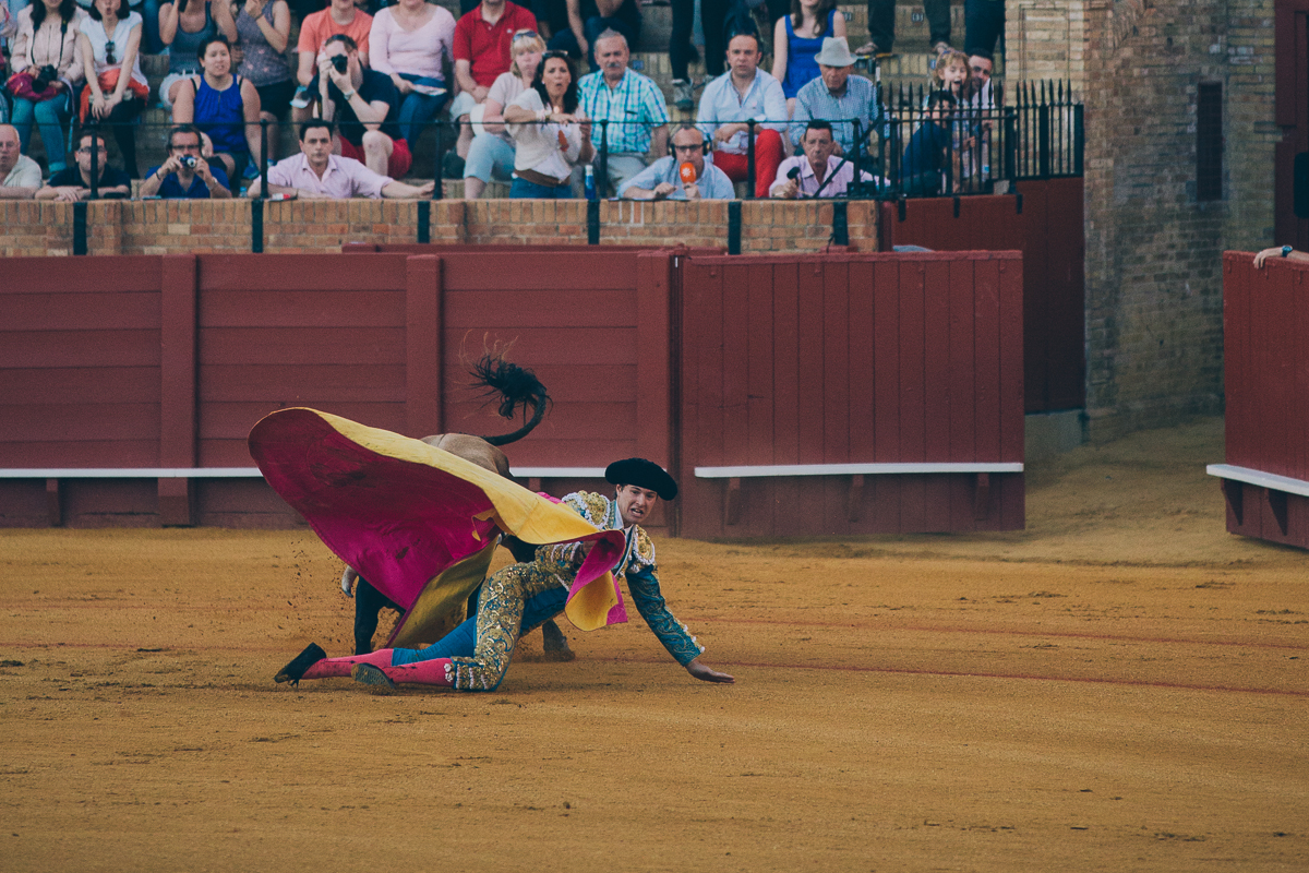 Seville Bull Fighting-17