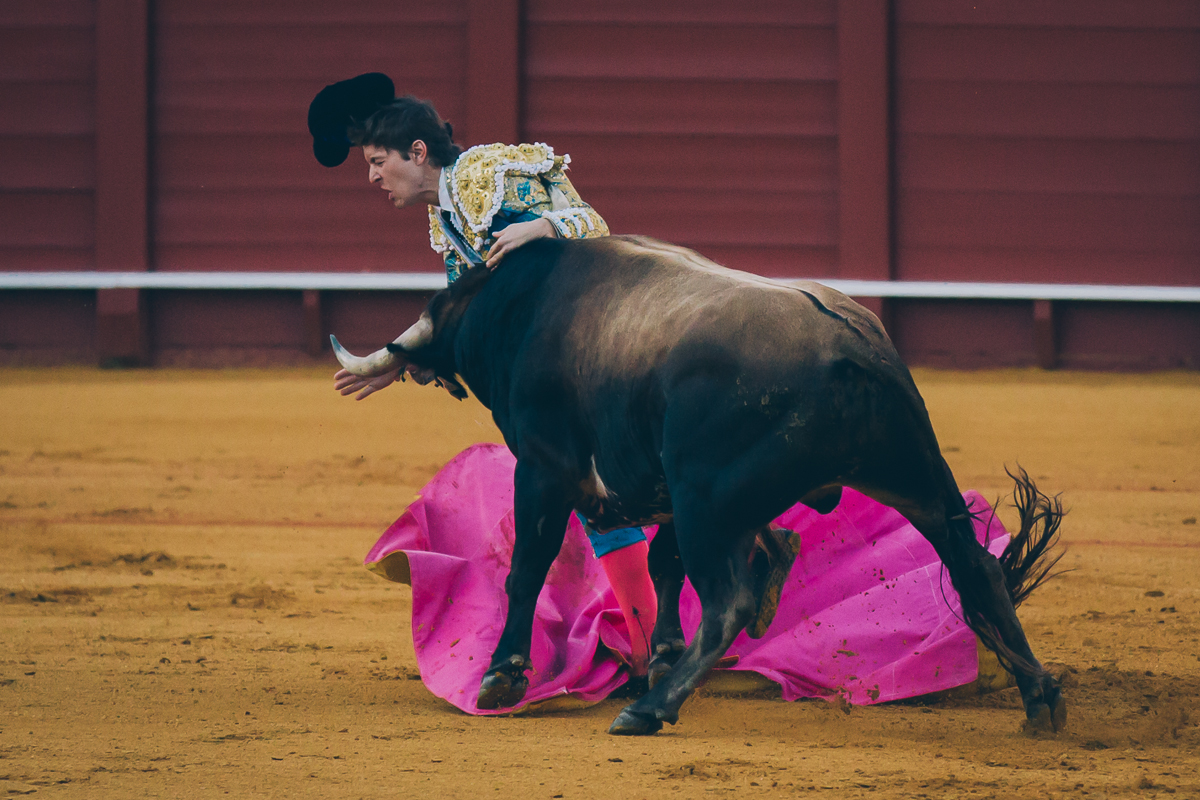 Seville Bull Fighting-19