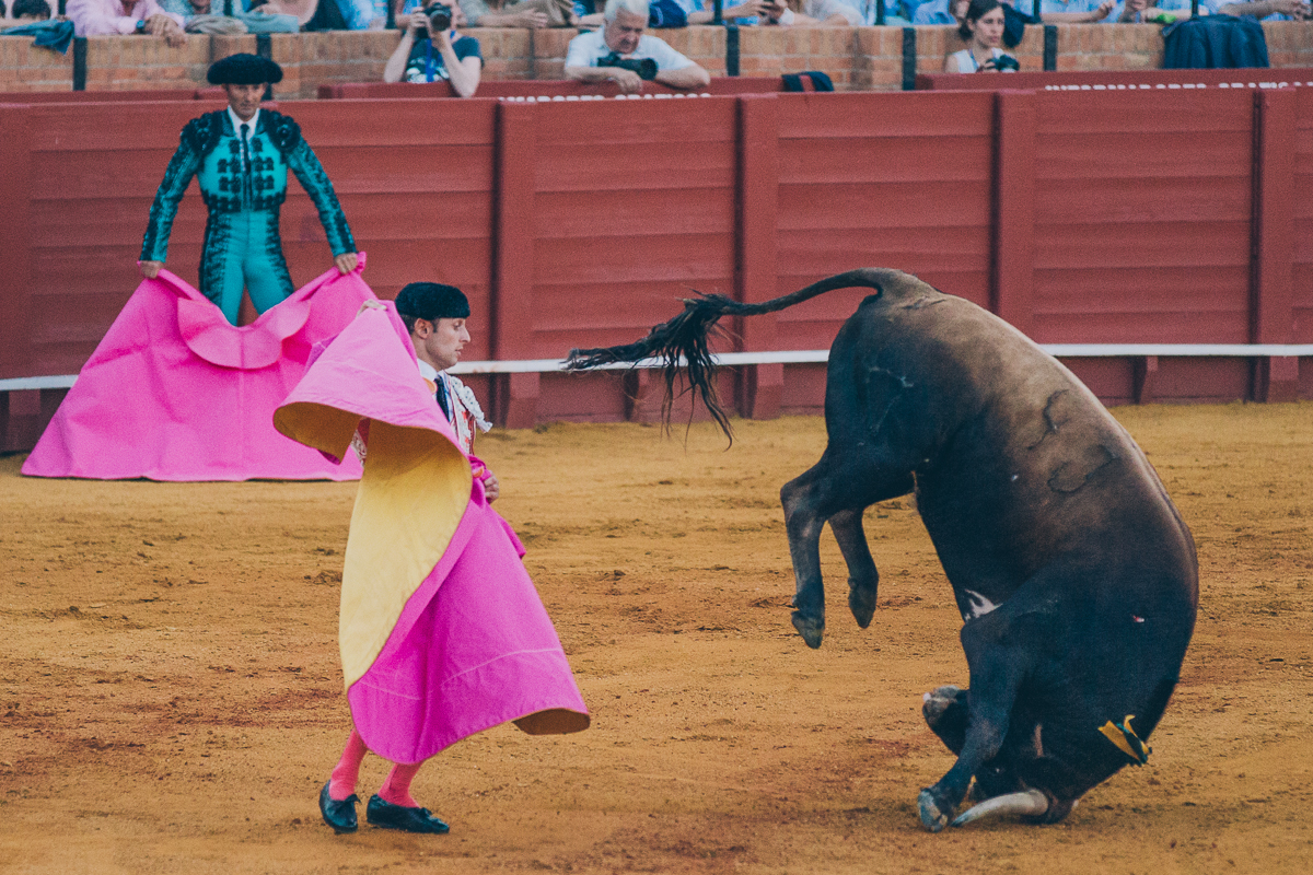Seville Bull Fighting-20