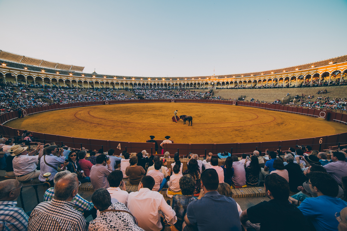 Seville Bull Fighting-22