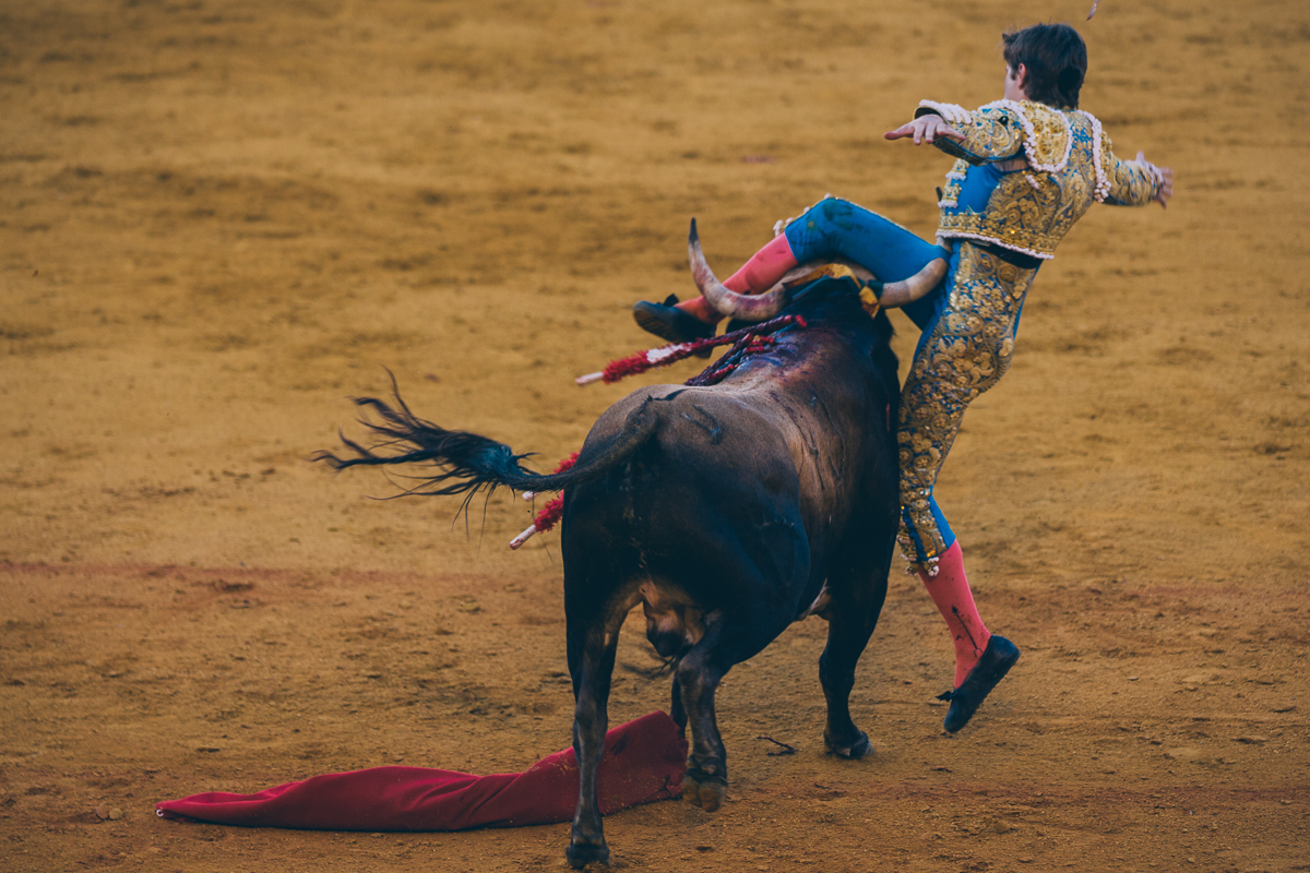 Seville Bull Fighting-24