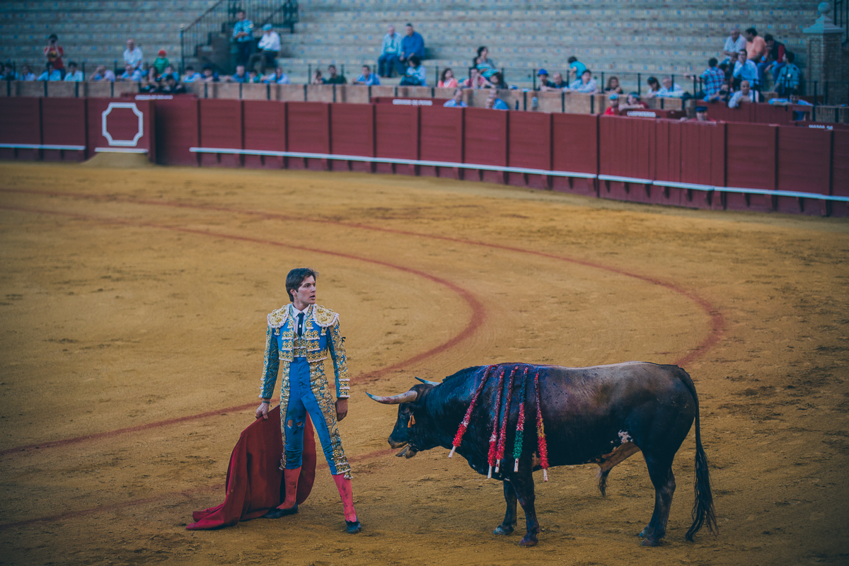 Seville Bull Fighting-26