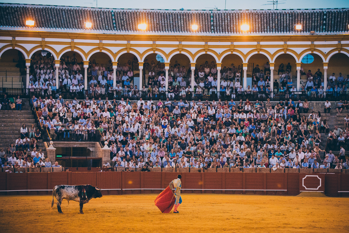 Seville Bull Fighting-29