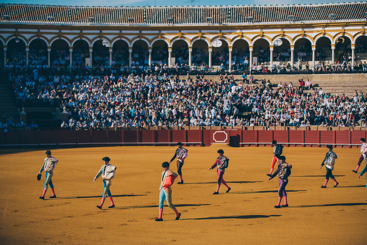 Seville Bull Fighting-4