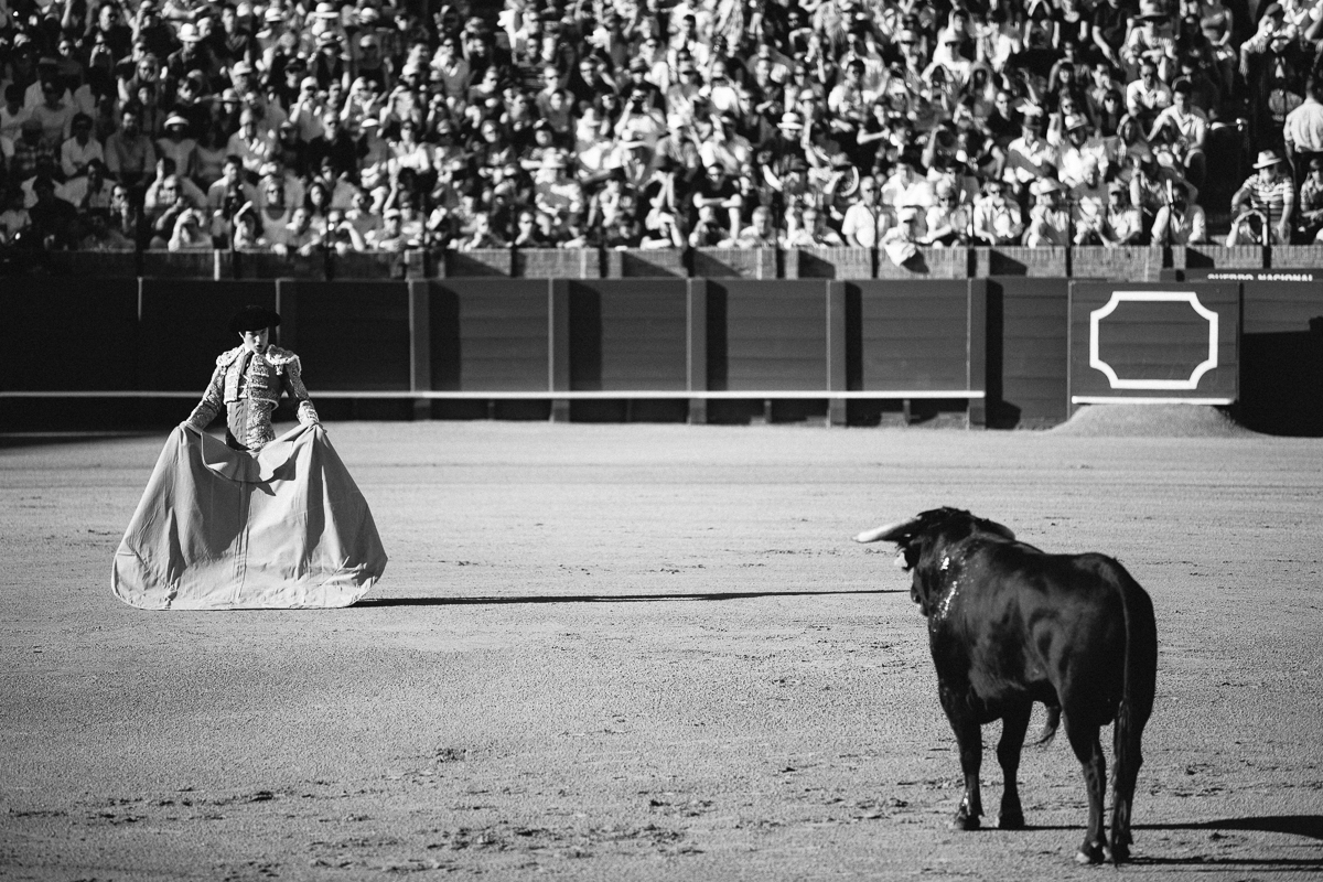 Seville Bull Fighting-8