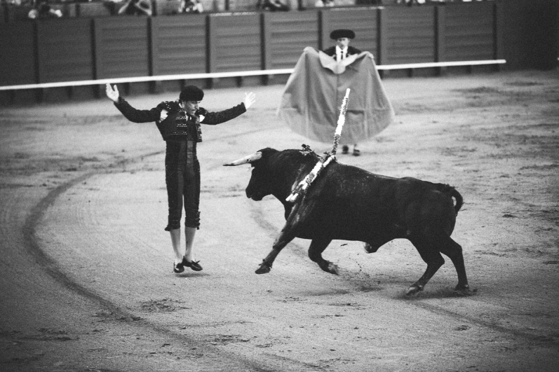 Seville Bull Fighting-9
